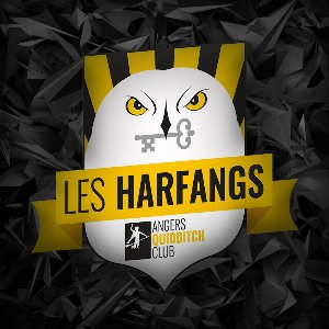 Les Harfangs Profile Picture