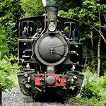 Antique Railroad in Southern France