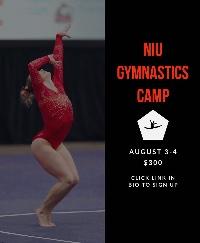 NIU Summer Camp