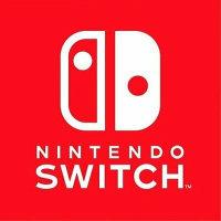 Nintendo Switch: SW-332-3205-2441