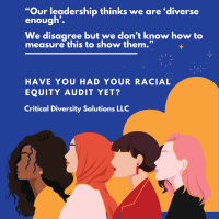 Racial Equity Audits + Critical Diversity Solutions