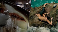 Busting Shark Movie Myths