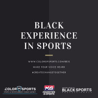 Black Experience Research Report and Diverse Exec Pipeline