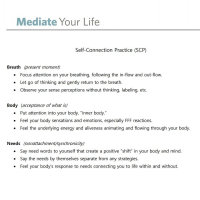 """What is """"Mediate Your Life""""? (YouTube interview with Ike Lasater)"""
