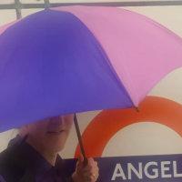 Bi / Trans Pride Umbrella (Ebay) #bibrolly