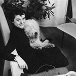 How to be Florence Knoll in 10 Easy Steps
