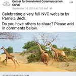 "CNVC re: streetgiraffes.com: ""Celebrating a very full NVC website by Pamela"""