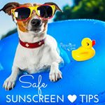 BLOG: Safe Sunscreen Tips