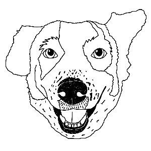 whatknots Profile Picture